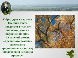 Образ древа в поэзии Есенина часто предстает в том же значении, что и в народ