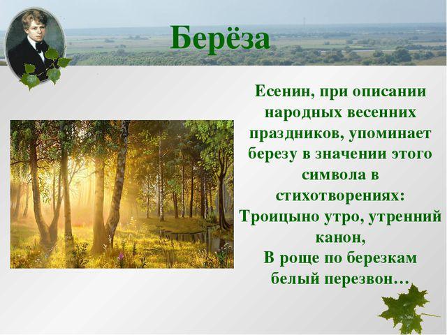 Есенин, при описании народных весенних праздников, упоминает березу в значени...