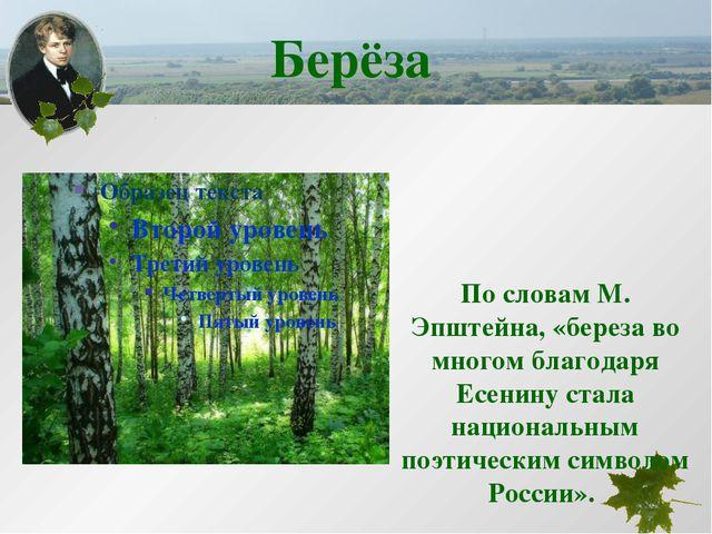 По словам М. Эпштейна, «береза во многом благодаря Есенину стала национальны...