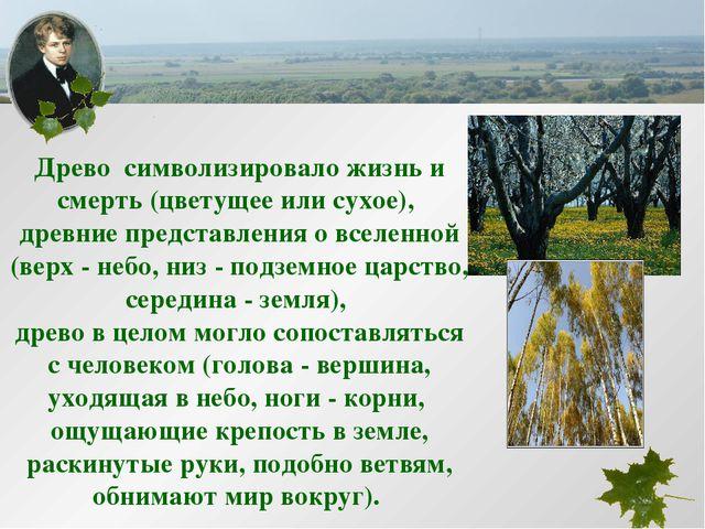 Древо символизировало жизнь и смерть (цветущее или сухое), древние представле...