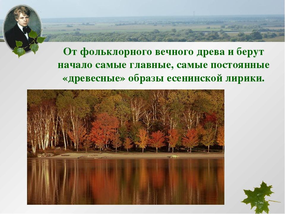 От фольклорного вечного древа и берут начало самые главные, самые постоянные...
