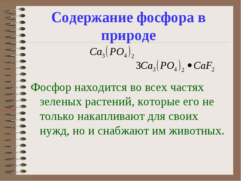 Содержание фосфора в природе Фосфор находится во всех частях зеленых растений...