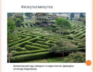 Физкультминутка Ботанический сад-лабиринт в окрестностях Джакарты (столица Ин