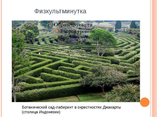 Физкультминутка Ботанический сад-лабиринт в окрестностях Джакарты (столица Ин...
