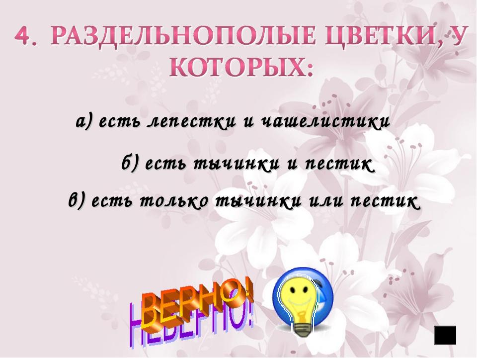 а) есть лепестки и чашелистики б) есть тычинки и пестик в) есть только тычин...
