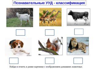 Познавательные УУД - классификация Найди и отметь в рамке картинки с изображ
