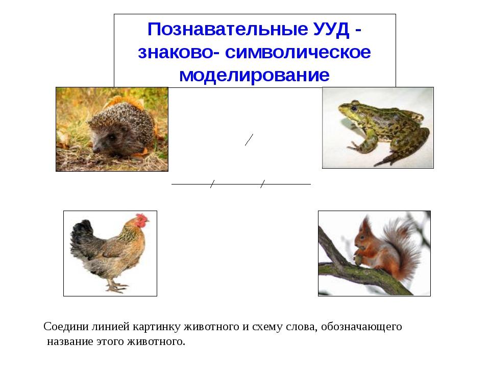 Познавательные УУД - знаково- символическое моделирование Соедини линией карт...