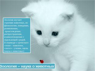 Зоология изучает строение животных, их физиологию, поведение, размножение, п