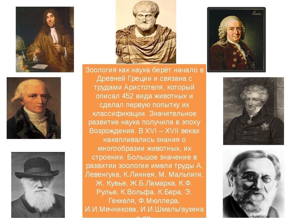 Зоология как наука берёт начало в Древней Греции и связана с трудами Аристоте...