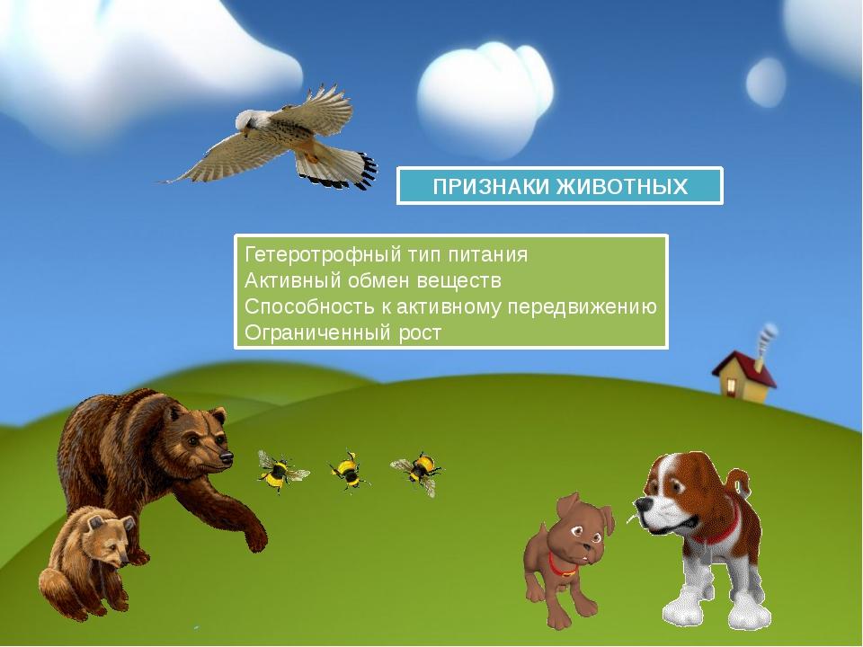 ПРИЗНАКИ ЖИВОТНЫХ Гетеротрофный тип питания Активный обмен веществ Способност...