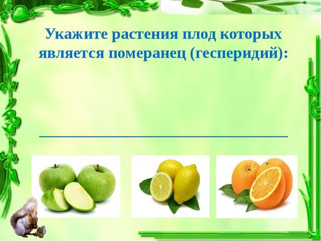 Укажите растения плод которых является померанец (гесперидий): ______________...