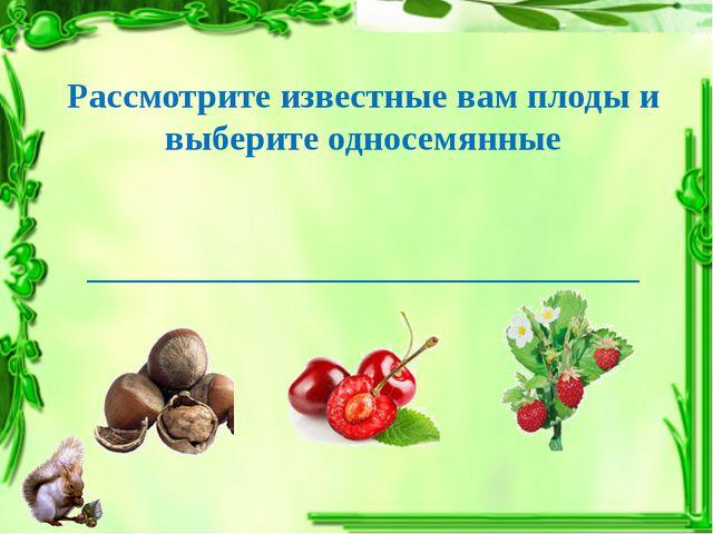 Рассмотрите известные вам плоды и выберите односемянные _____________________...