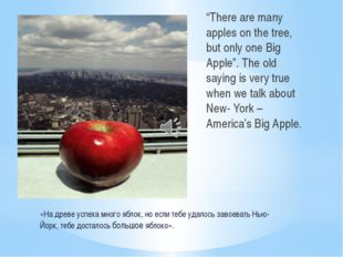 «На древе успеха много яблок, но если тебе удалось завоевать Нью-Йорк, тебе д