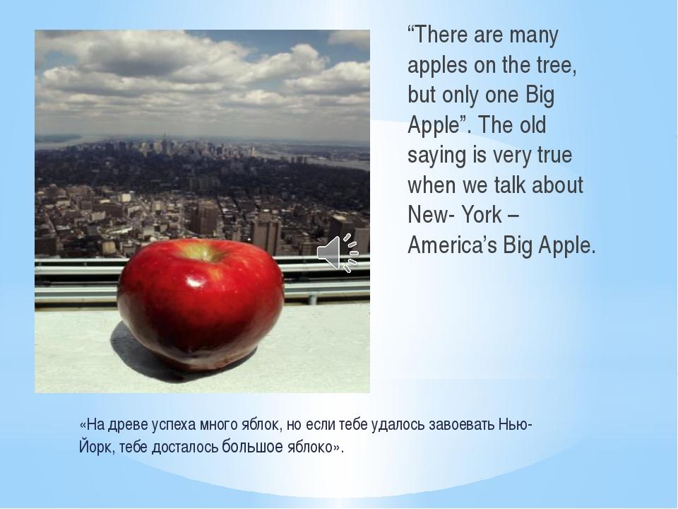 «На древе успеха много яблок, но если тебе удалось завоевать Нью-Йорк, тебе д...