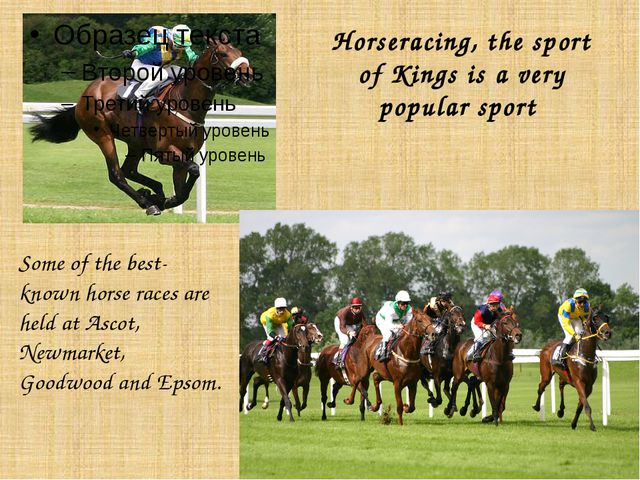 Horseracing, the sport of Kings is a very popular sport Some of the best-know...