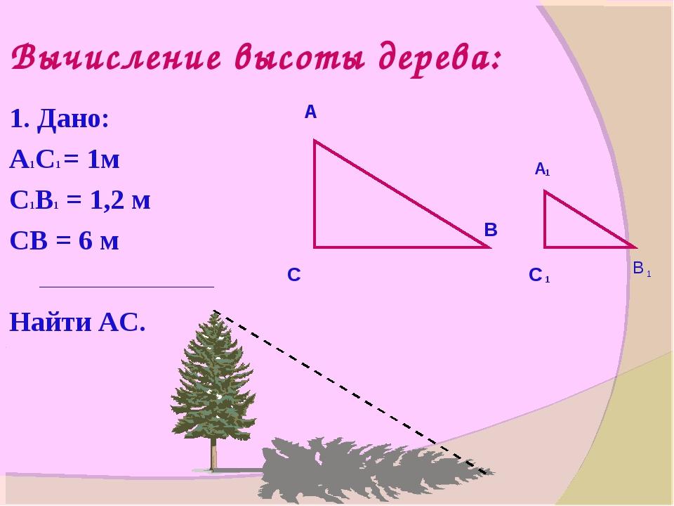 Вычисление высоты дерева: 1. Дано: А1С1 = 1м С1В1 = 1,2 м СВ = 6 м Найти АС....