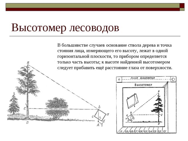 Высотомер лесоводов В большинстве случаев основание ствола дерева и точка сто...