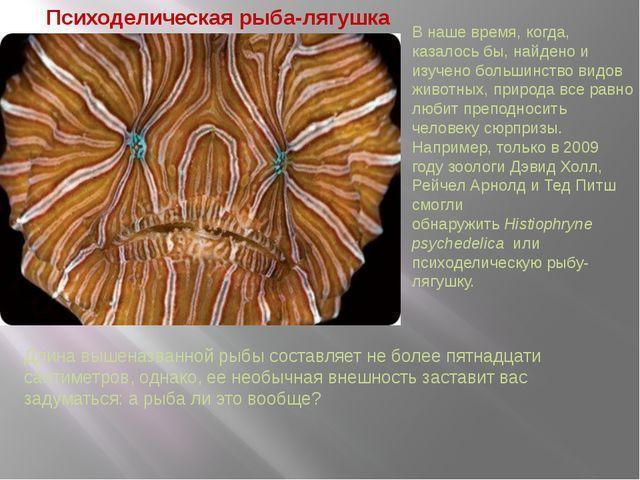 Психоделическая рыба-лягушка Длина вышеназванной рыбы составляет не более пят...