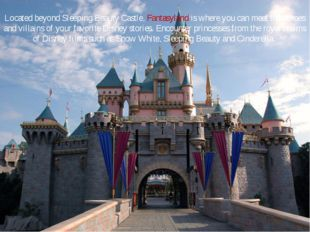 Located beyond Sleeping Beauty Castle, Fantasyland is where you can meet the