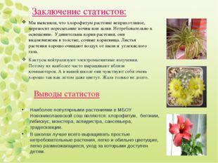 Мы выяснили, что хлорофитум растение неприхотливое, переносит пересыхание поч