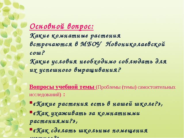 Основной вопрос: Какие комнатные растения встречаются в МБОУ Новониколаевской...