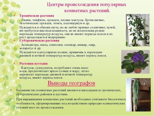 Центры происхождения популярных комнатных растений. Тропические растения Лиан...