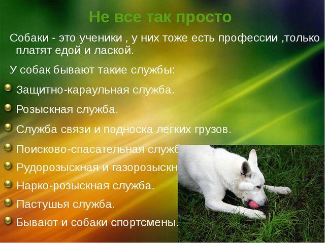 Не все так просто Собаки - это ученики , у них тоже есть профессии ,только пл...