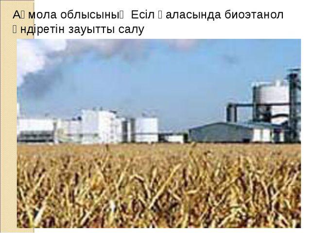 Ақмола облысының Есіл қаласында биоэтанол өндіретін зауытты салу