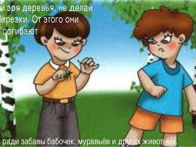Не ломай зря деревья, не делай на них вырезки. От этого они сохнут и погибают...