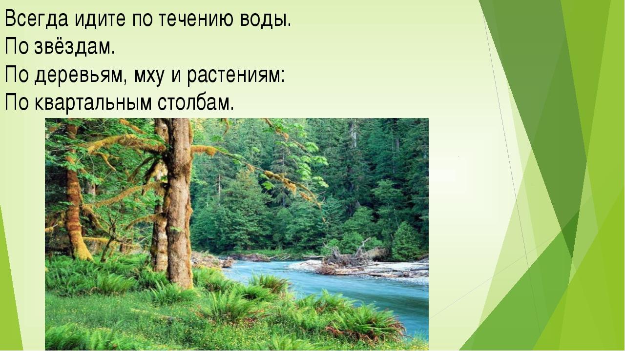 Всегда идите по течению воды. По звёздам. По деревьям, мху и растениям: По кв...