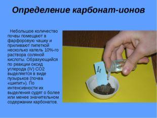 Определение карбонат-ионов Небольшое количество почвы помещают в фарфоровую ч