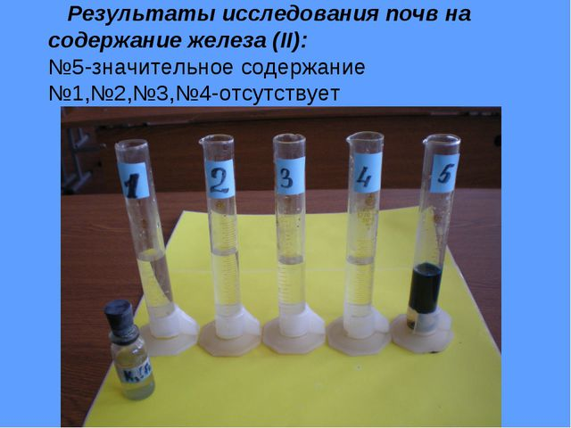 Результаты исследования почв на содержание железа (II): №5-значительное соде...