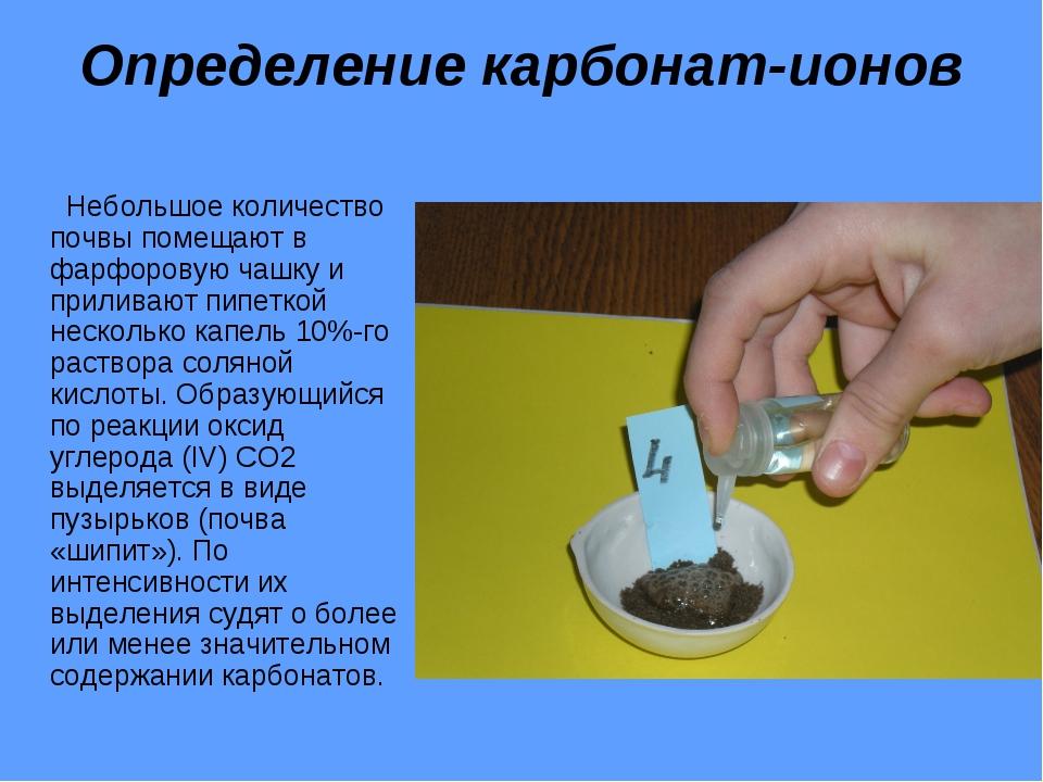 Определение карбонат-ионов Небольшое количество почвы помещают в фарфоровую ч...
