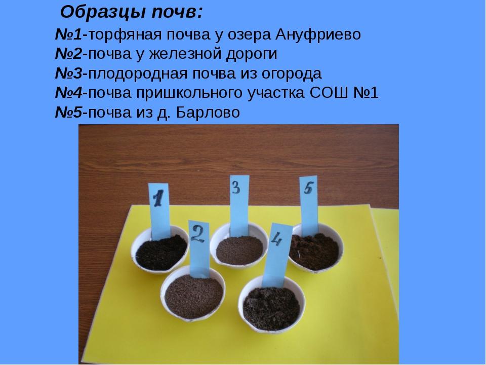Образцы почв: №1-торфяная почва у озера Ануфриево №2-почва у железной дороги...