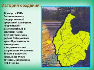 12 августа 1987г. был организован государственный природный заповедник «Буре