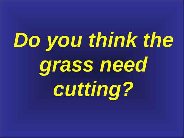 Do you think the grass need cutting?