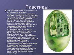 Пластиды Это органеллы клетки. Различают 3 типа пластид: зеленые – хлоропласт
