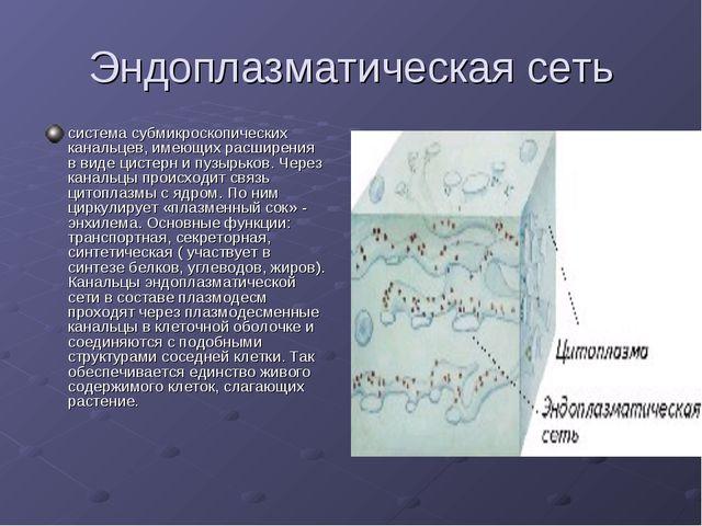 Эндоплазматическая сеть система субмикроскопических канальцев, имеющих расшир...