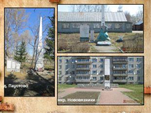 д. Паустово п. Центральный мкр. Нововязники