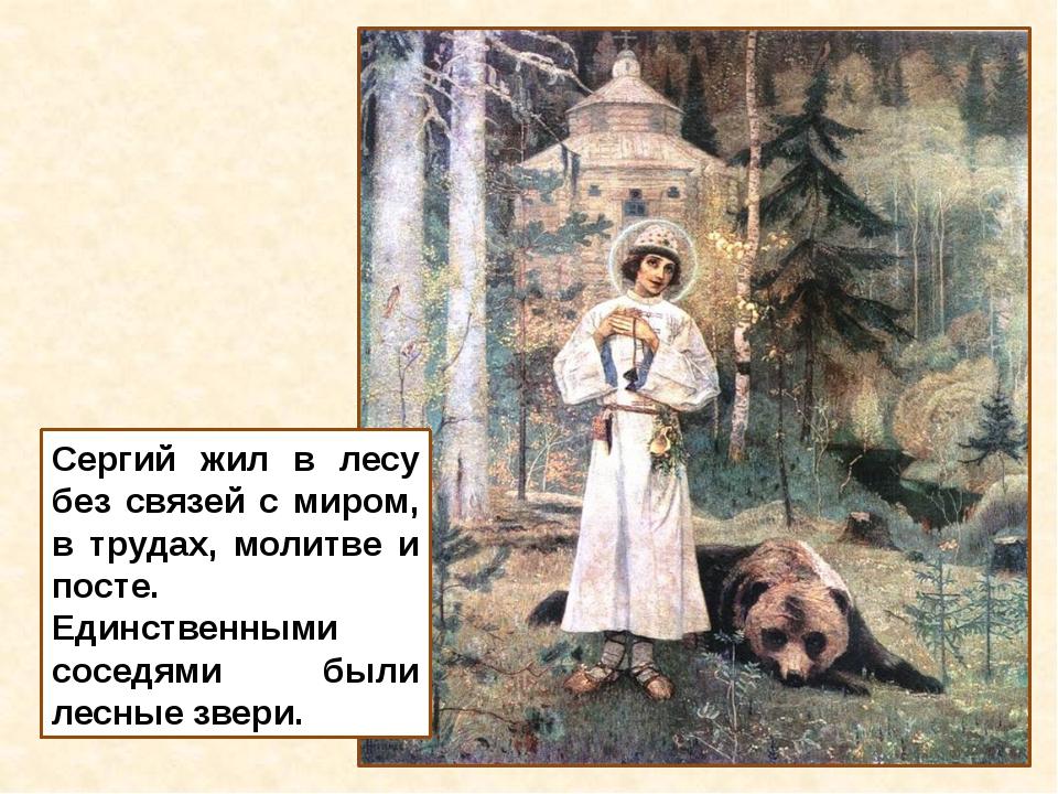 Сергий жил в лесу без связей с миром, в трудах, молитве и посте. Единственным...