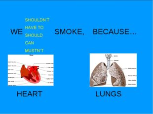 WE SMOKE, BECAUSE… SHOULDN'T HAVE TO SHOULD CAN MUSTN'T HEART LUNGS