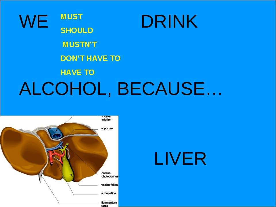 WE DRINK ALCOHOL, BECAUSE… MUST SHOULD MUSTN'T DON'T HAVE TO HAVE TO LIVER