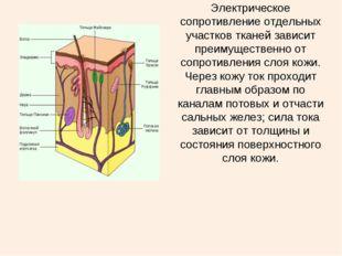 Электрическое сопротивление отдельных участков тканей зависит преимущественно