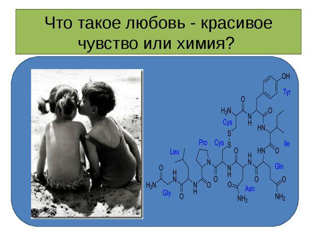 Что такое любовь - красивое чувство или химия?