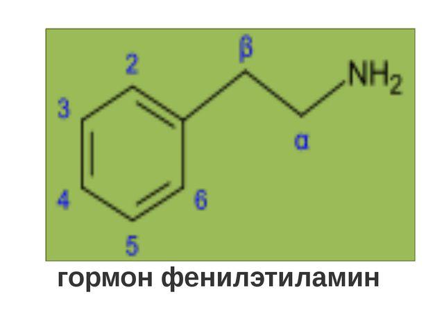 гормон фенилэтиламин
