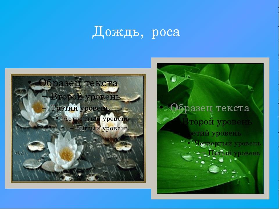 Дождь, роса