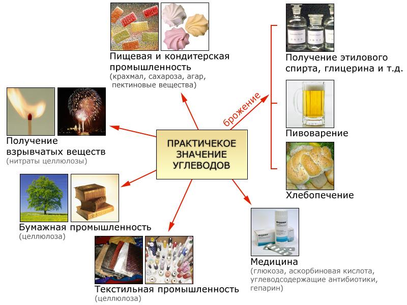http://collection.edu.yar.ru/dlrstore/000004ae-1000-4ddd-0911-020046bc4327/133.jpg