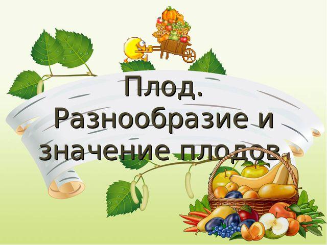 Плод. Разнообразие и значение плодов.