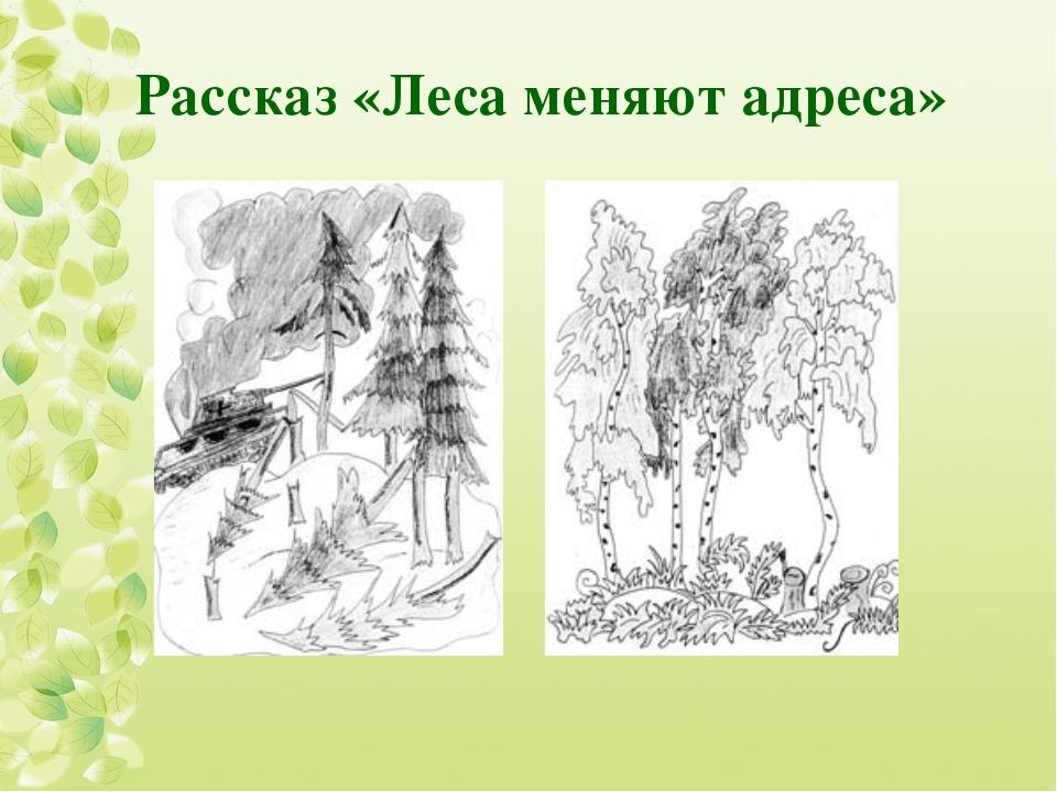 Рассказ «Леса меняют адреса»