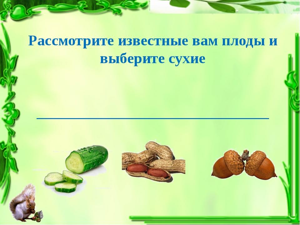 Рассмотрите известные вам плоды и выберите сухие ____________________________...